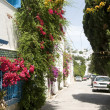 Street scene Sidi Bou Said Tunisia — Stock Photo