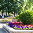 Stock Photo: Flowers garden benches in Hippodrome Park Istanbul Turkey