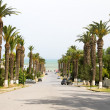 Постер, плакат: Boulevard from train station to the Mediterranean Sea Rue Dag Hammarskjoeld Carthage Hannibal Tunis Tunisia
