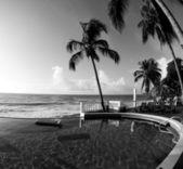 Infinity swimming pool nicaragua black & white — Stock fotografie