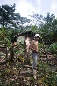Editorial one arm man working in jungle nicaragua — Stock Photo