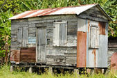 Gamla fjällpanel zink hus stora majs ön nicaragua — Stockfoto