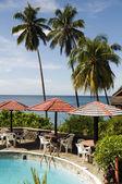 бассейн карибского моря суфриер сент-люсия — Стоковое фото