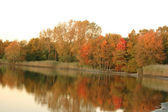 Ciel de l'automne blanc — Photo