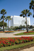 Park with flowers casablanca morocco — Stock Photo