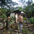 One arm man working in jungle nicaragua — 图库照片