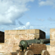 Stock Photo: Portuguese canons ramparts protective
