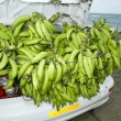 Plantain bananas trunk of car corn island nicaragua — Stock Photo