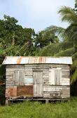 Typical house corn island nicaragua — Stock Photo