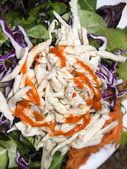 Vietnamese food chicken salad — Stock Photo