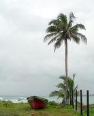Gamla fiske båt seaside nicaragua — Stockfoto