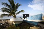 Fishing boats on shore caribbean sea — Stock Photo