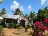 Maison natale de zinc métal toit nicaragua — Photo