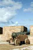 Portuguese canons ramparts protective — Stock Photo