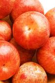 Pluots fruit hybrid plum and apricot — Stock Photo