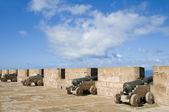 Portuguese canons ramparts protective wall essaouira morocco — Stock Photo