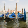 Gondolas in Grand Canal Venice Italy famous church in background — Stock Photo