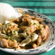 Chinese food twice cooked chicken — Stock Photo #23056506