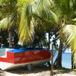 Boat taxi on beach Bequia — Stock Photo