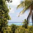 Panorama San Andres Island Caribbean Sea Colombia South America — Stock Photo