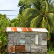 Ramshackle zinc clapboard house jungle Corn Island Nicaragua — Stock Photo #23058432