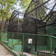 Stock Photo: Old zoo cages Emperor Valley Zoo Trinidad Port of Spain