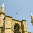 Cathedral mosque and minarets lefkosia cyprus — Stock fotografie