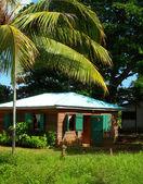 Maison natale de jungle corn island nicaragua — Photo