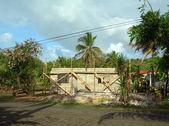 дом кукурузы острове никарагуа — Стоковое фото