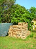 Lobster pot traps in yard Big Corn Island Nicaragua — Stock Photo