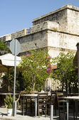 Historické limassol lemessos hrad kvetoucí keř rostlin, kypr — Stock fotografie