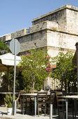 Tarihi limasol lemessos kalesi çiçekli çalı bitki kıbrıs — Stok fotoğraf