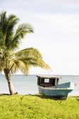 старая рыбацкая лодка кукурузы острове никарагуа — Стоковое фото