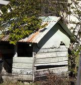 Native maison bequia st. vincent et les grenadines — Photo