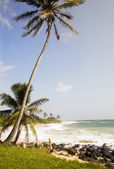 Desolate beach corn island nicaragua — Stock Photo