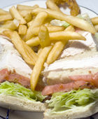 Turkey club sandwich french fries — Stock Photo