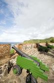 Cannons Fort Oranje Oranjestad Sint Eustatius island Caribbean Netherlands — Stock Photo