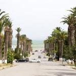 ������, ������: Rue Dag Hammarskjoeld Carthage Hannibal Tunis Tunisia
