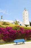 Tunisia Africa Sidi Bou Said mosque with flower garden — Stock Photo