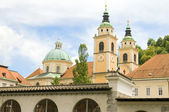 Ljubljana Cathedral St. Nicholas Church Slovenia Europe — Stock Photo