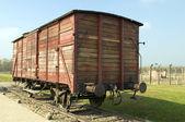 холокост смерть лагерей скота поезд — Стоковое фото