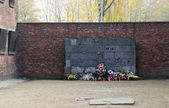Memorial at the wall at Auschwitz — Stock Photo