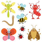 Cute bugs — Stock Vector