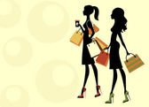 Two chick women shopping — Stock Vector