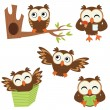 Cute little owls set — Stock Vector