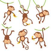 Funny monkeys set — Stock Vector