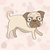 Cute pug dog — Stock Vector