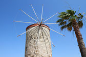 Old Greek Windmill and Palm — Stock Photo