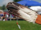 Fan de plumes amérindiennes — Photo