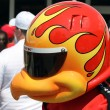 Firestone Mascot Firehawk during 500 Festival Community Day — Stock Photo